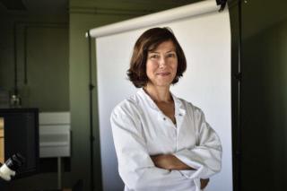 Sophie Allart nommée au grade de chevalier de l'Ordre National du Mérite